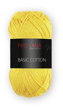 Basic Cotton Farbe 22