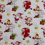 BW Schne und Weihnachtsmann
