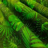 Outdoor Tropische Blätter