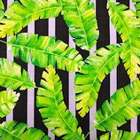 Outdoor Palmenblätter auf Streifen