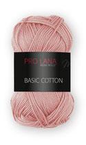 Basic Cotton Farbe 23