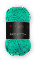 Basic Cotton Farbe 70
