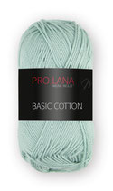 Basic Cotton Farbe 61