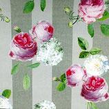 Outdoor Rosen auf grauem Streifen