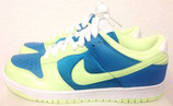Nike Dunk Low Sneaker Limited