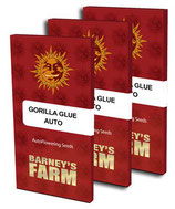 GORILLA GLUE AUTO * BARNEY'S FARM - FEM