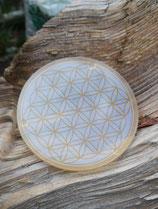 untersetzer glas transparent goldfarben, 8,9 cm