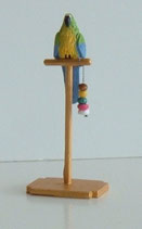 Blue Green Yellow Macaw Parrot on Perch