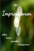 Instrumental-DVD   Impressionen