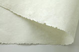 Seidelbast in 30 g - Oberfläche medium - 2 Bögen