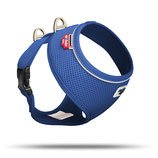 Basic Harness Air Blue