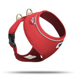 Basic Harness Air Red