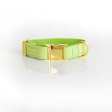 Halsband Apfelgrün