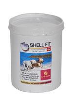Shellfit