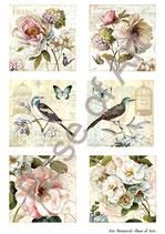 PA4-144 Los pajaros y los flores