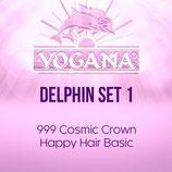 Delphin Set 1 Basic