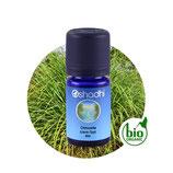 Citronella (Java-Typ) BIO - 5 ml