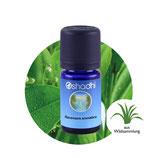 Ravensara aromatica - 5 ml
