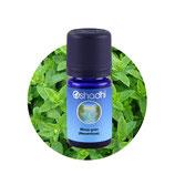 Minze grün (Nanaminze) - 5 ml