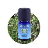 Thymian süß (Geraniol)  BIO - 5 ml