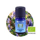 Ysop decumbens (Cineol) BIO - 5 ml
