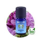 Rhododendron BIO - 5 ml