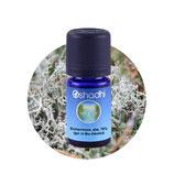 Eichenmoos, abs. 75 % (gel. in Bio-Alkohol) 5 ml