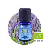 Lavendel ((Speiklavendel) BIO