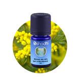 Mimose, abs. 66 % (gel. in Bio-Alkohol) - 3 ml