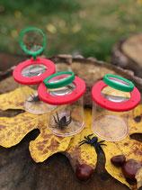 Lupenbecher für kleine Naturforscher