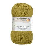 Organic Cotton 0070 grass