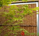 Kokowall® - standaard tuinscherm in verzinkt stalen frame 40-35-1.25mm