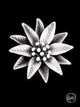 Bague en argent fleur 25