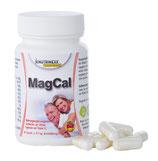 MagCal