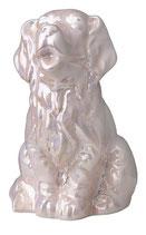 Wunderschöne Hundeurne aus Porzellan in 3 verschiedenen Farben - 0,7 Liter