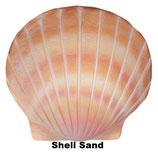 """Urne in der Form einer Muschel """"Shell"""" in verschiedenen Ausführungen - 6,5 Liter"""