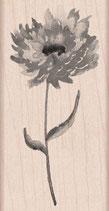 Hero Arts Woodblock Stamps: Puff Flower H5903