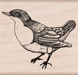 Hero Arts Woodblock Stamp: L'Oiseau D5909