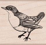 Hero Arts Woodblock Stamp: L'Oiseau D5909