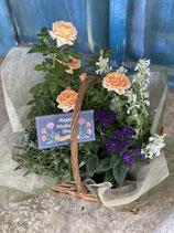 花鉢+ハーブセット