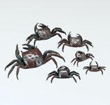 55-63~69 蟹