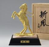 24―54 新風(富永直樹)