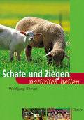 Schafe und Ziegen natürlich heilen