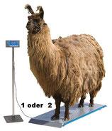 Tierwaagen in 3 Größen
