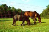 Euro Netz Mustang 145 cm hoch