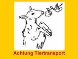 Transport-Aufkleber Tiertransport