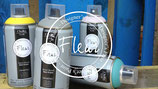 colori spray 300 ml chalky look fleur