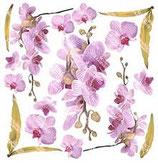 pellicola stampabile per sospeso trasparente orchid pink 2/15