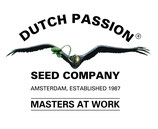 Dutch Passion - Blueberry
