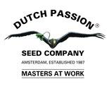 Dutch Passion - Blueberry